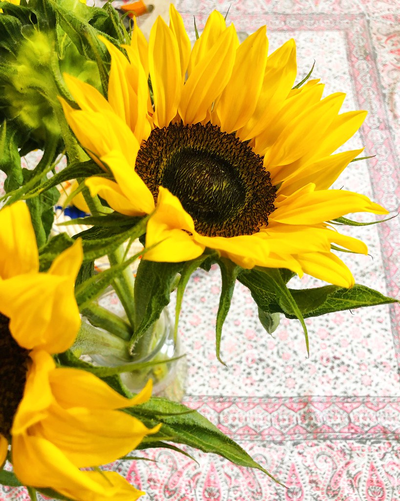 Sunflower Prettygreentea