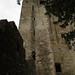 "<p><a href=""https://www.flickr.com/people/7409168@N06/"">chedpics</a> posted a photo:</p>  <p><a href=""https://www.flickr.com/photos/7409168@N06/48391428521/"" title=""Castle Walls (Blarney)""><img src=""https://live.staticflickr.com/65535/48391428521_569e65359a_m.jpg"" width=""160"" height=""240"" alt=""Castle Walls (Blarney)"" /></a></p>"