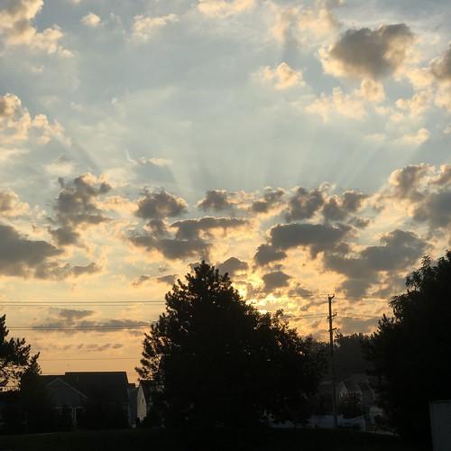 sunrise trees clouds