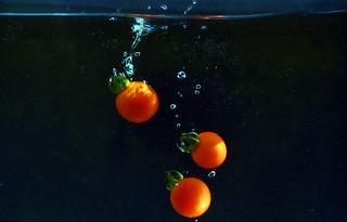 Tomatoes ..  Tomates ( Explore )