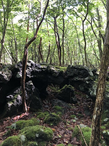 CAMP AKAIKEの溶岩帯