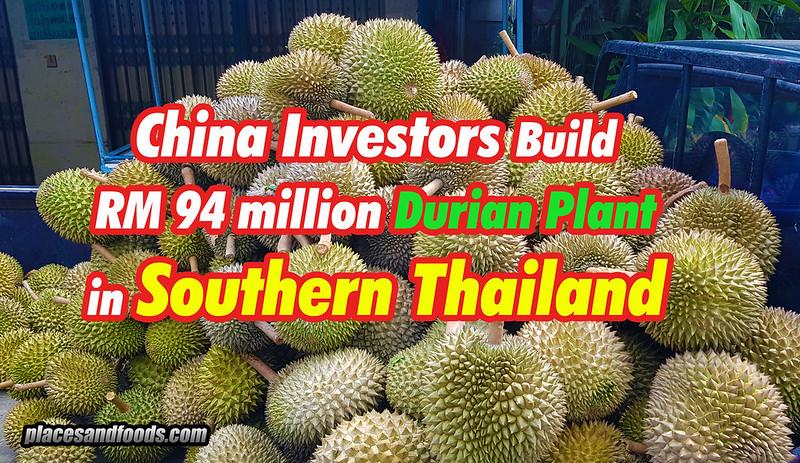 china durian