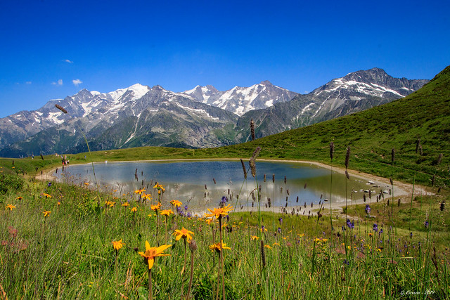 Le Mont (encore un peu) Blanc (Savoie 07/2019)