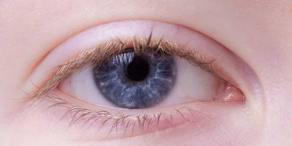 lentille-yeux-zoom-mouvements