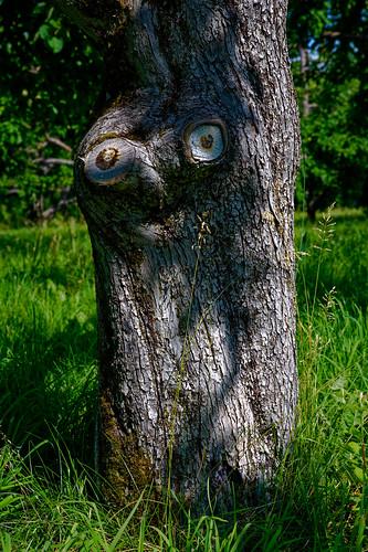 Je te vois! / I see you!