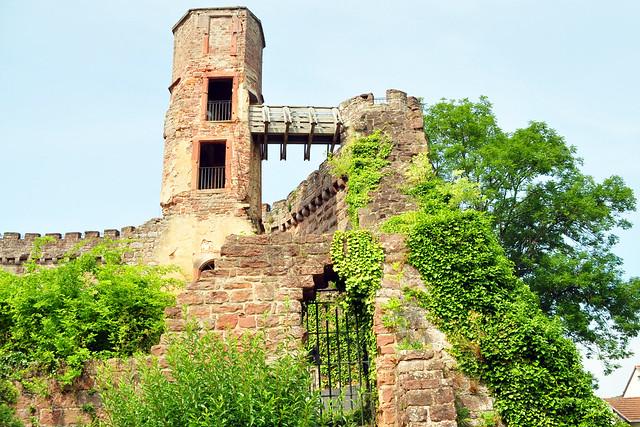 Juli 2019 ... Dilsberg am Neckar ... Foto: Brigitte Stolle