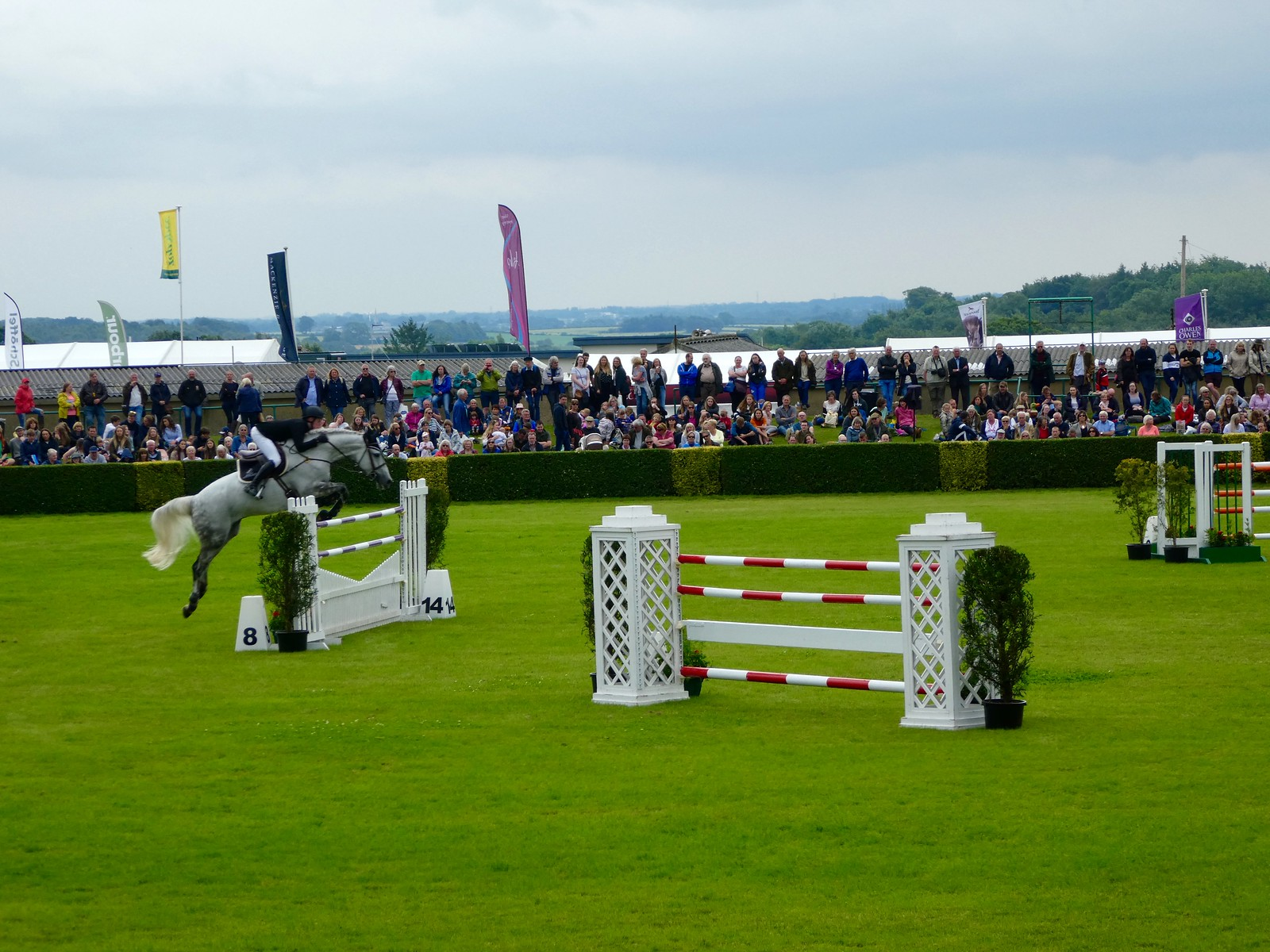 Show Jumping at the Great Yorkshire Show, Harrogate