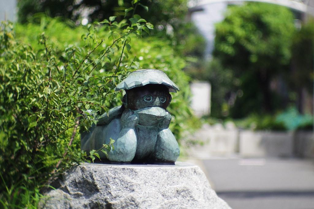 pentax q10 cine yashinon 38mm