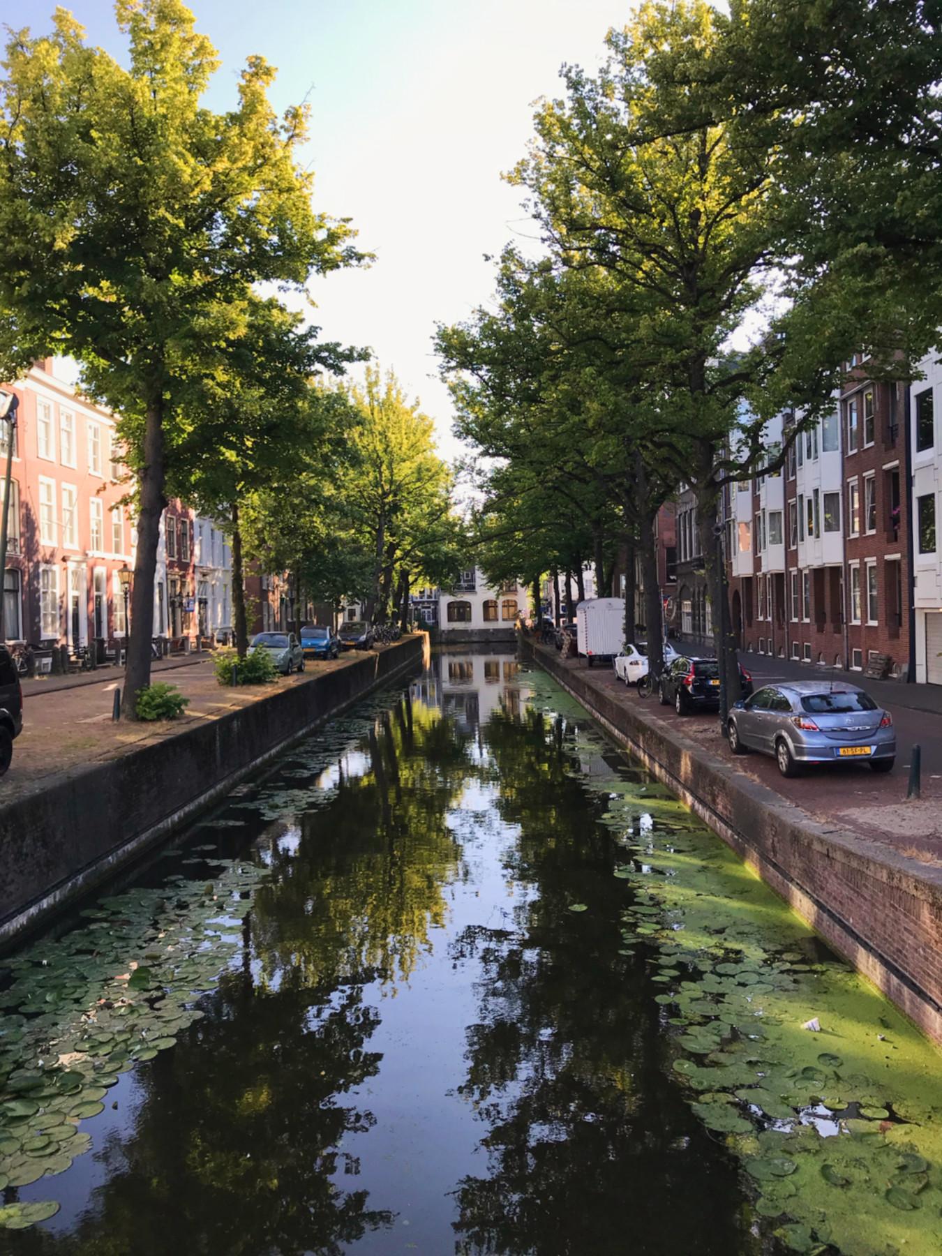 082-Nederland-Den Haag