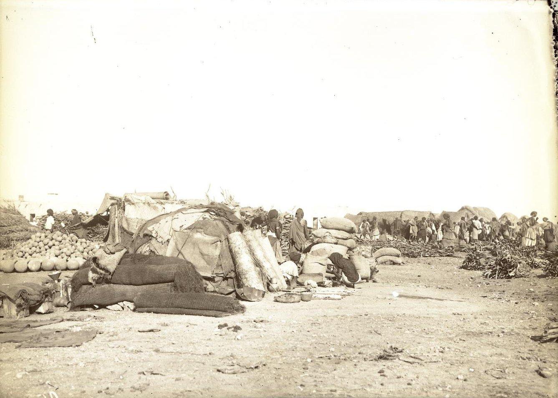 95. Джибути. Вид на сомалийское кочевье