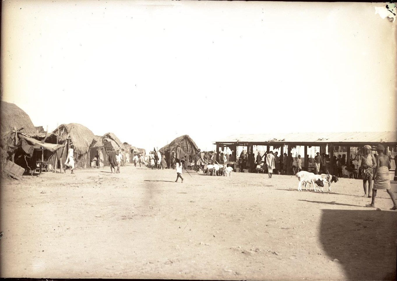 87. Джибути. Мясной рынок