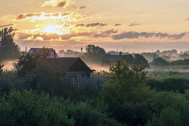 Morning in Savinskoe