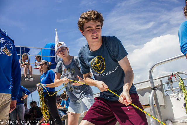 MBIO2019_Miami_S2_SharkTagging_P19