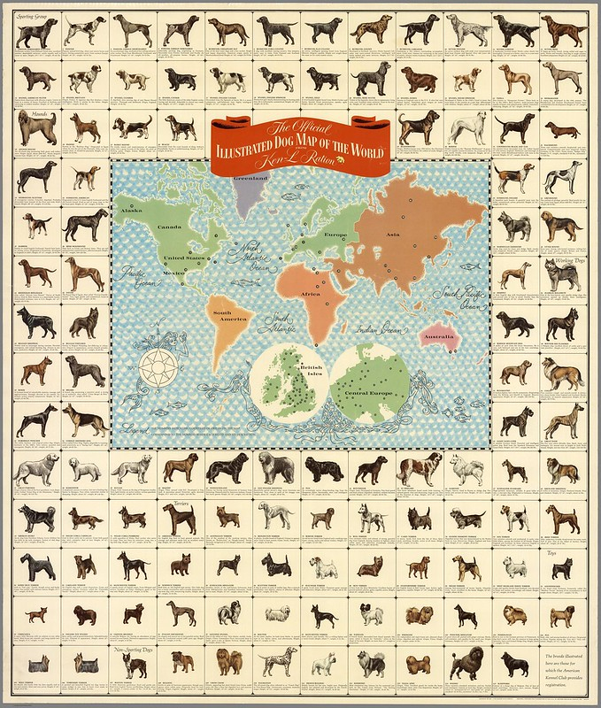 Dog Map of the World, 1967