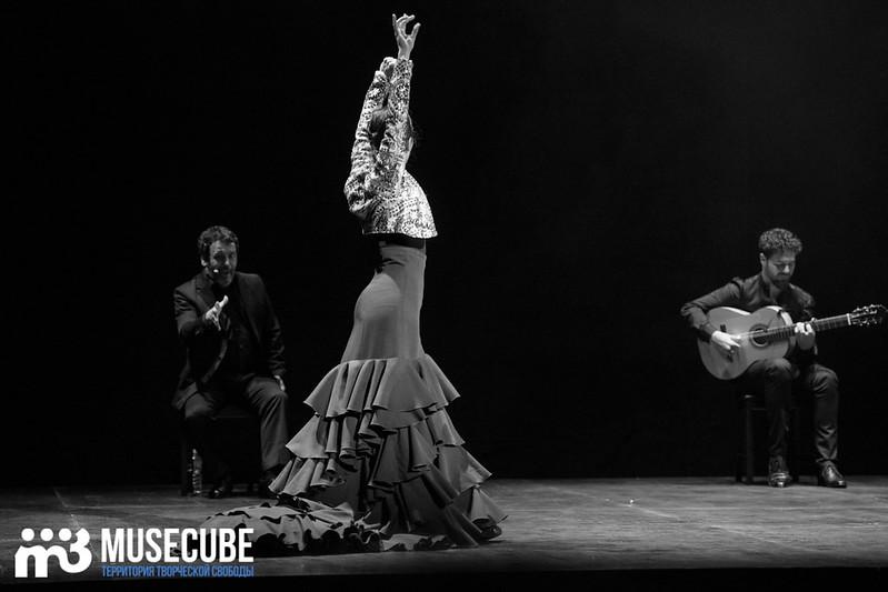 zvezdi_ispanskogo_flamenco_055