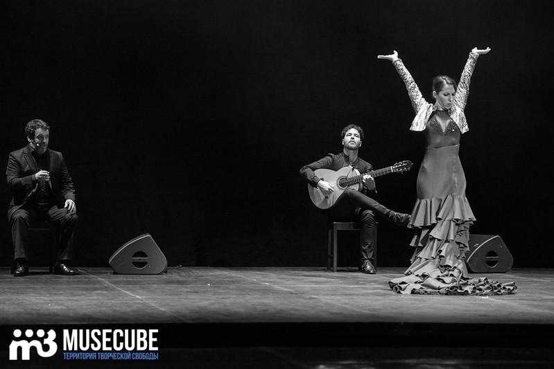 zvezdi_ispanskogo_flamenco_051