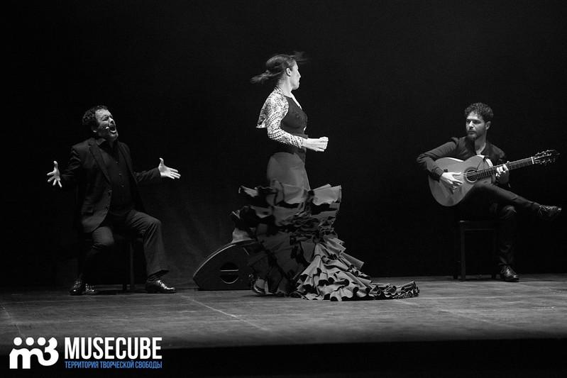 zvezdi_ispanskogo_flamenco_063