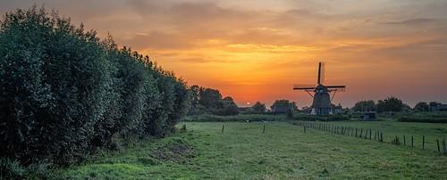haarlem noordholland nederland sunrise cffaa