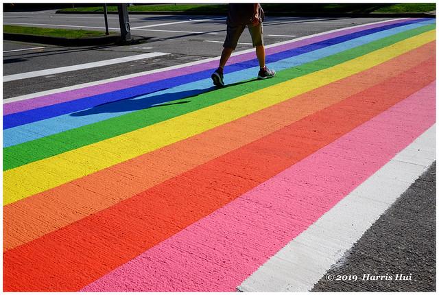 Rainbow Walk - Minoru XT7406e