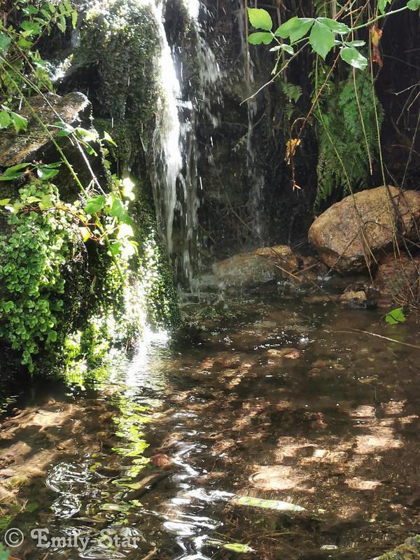 Camino Portugues - Tag 12-120821