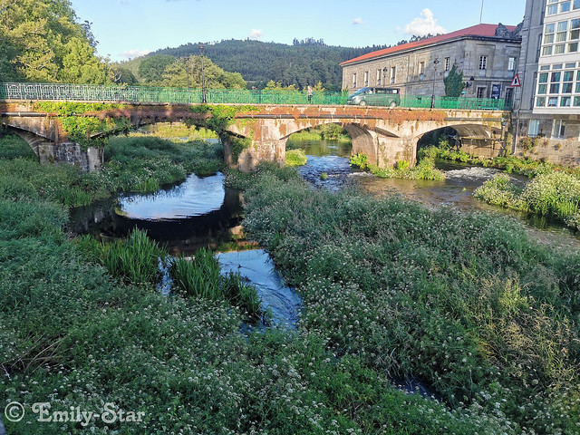 Camino Portugues - Tag 12-204505