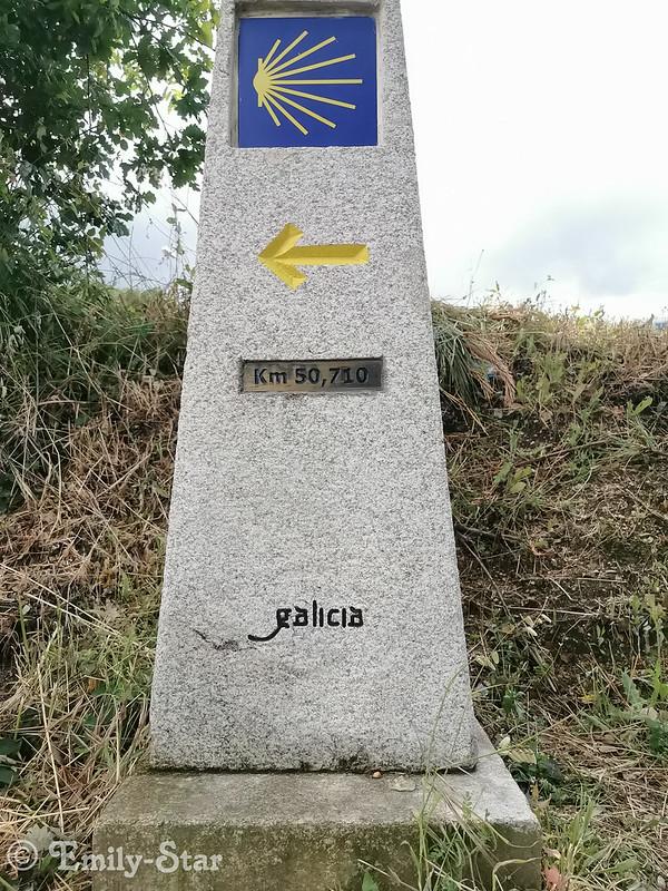 Camino Portugues - Tag 12-151408