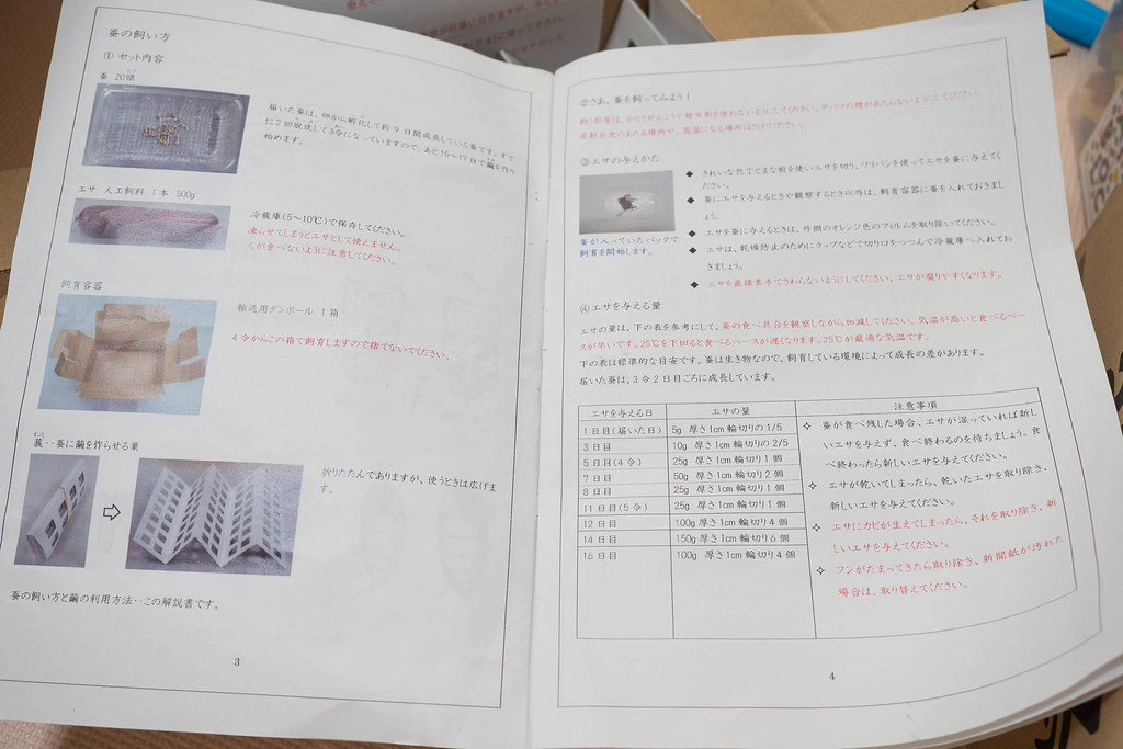 kaiko-14