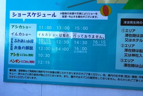 淡島マリンパークのイルカ公開トレーニングの時間