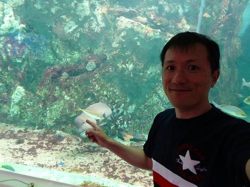 淡島マリンパーク水族館