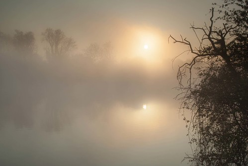 fletchers pond long eaton trentlock derbyshire east midlands nottingham england uk great britain europe fog mist sun water atmosphere reflection reflections canon dslr 5d mkii julian barker