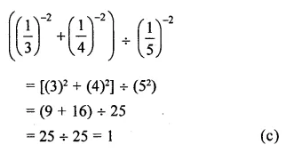 APC Maths Class 8 Solutions Chapter 2 Exponents and Powers Objective Type Questions Q4.1