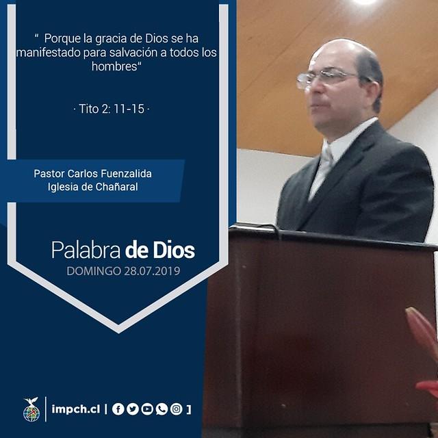 Palabra de Dios   Domingo 29 de Julio 2019