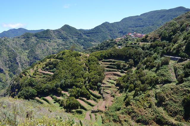 Anaga, Cruz del Carmen route September, Tenerife