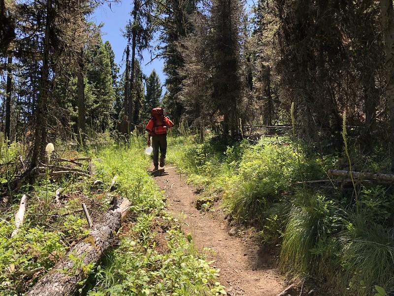 Hiking to McCart