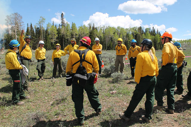Researchers preparing for the start of a prescribed fire at Fishlake National Forest