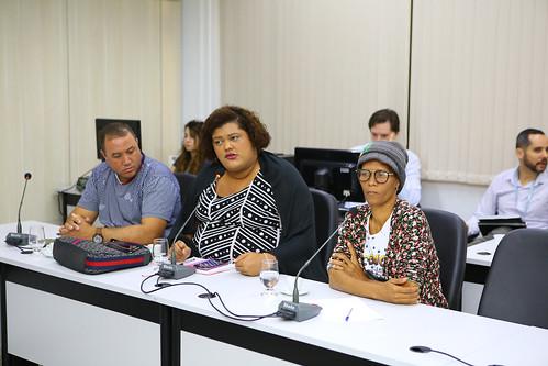 13ª Reunião Ordinária - Comissão de Mulheres -Reunião com a convidada Dirlene Marques, da Rede Feminista de Saúde