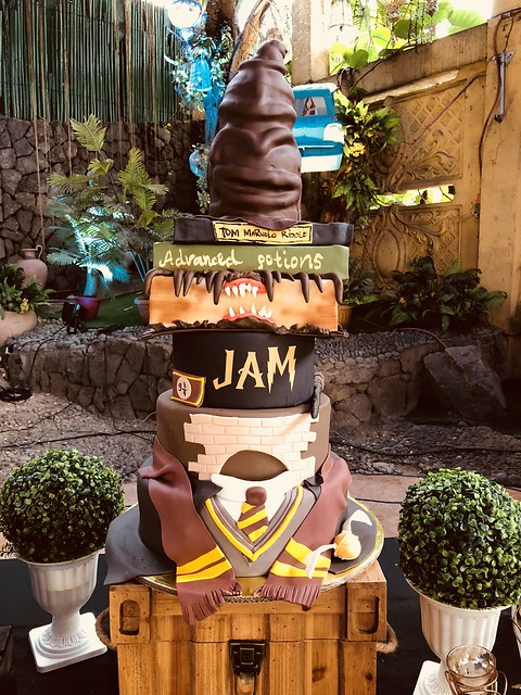 Harry Potter Themed Cake by Malen Biunas