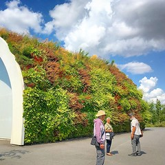 Vertical garden at the cable car station