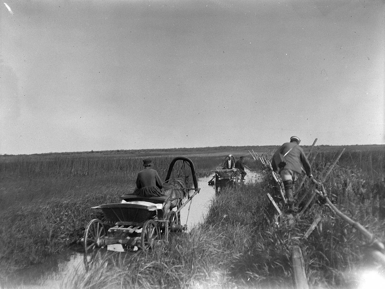 03. 1897. Дорога по болоту