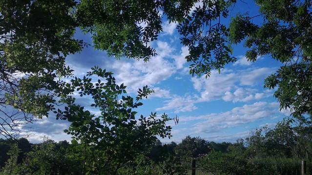 Monday blues, Oxfordshire.