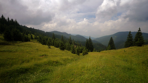 mountains valley pine trees green grass cloudy grey blue sky harghita canoneos6d summer panoramic horizontal landscape cornuspixels
