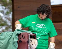20190728 PG Wildlife Open House - Al Susinskas-8