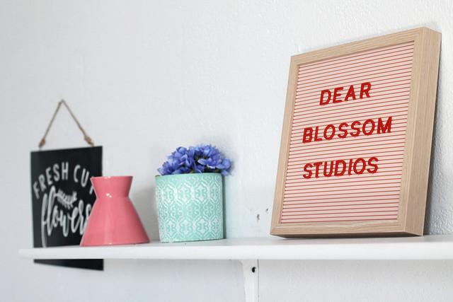 dear blossom studios photography rochester ny