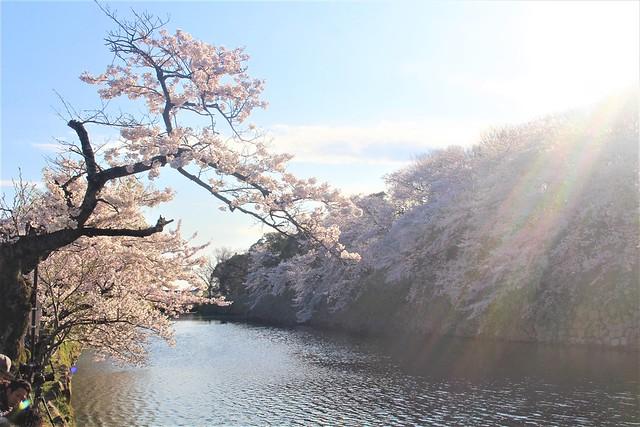 shigakengokoku-gosyuin018