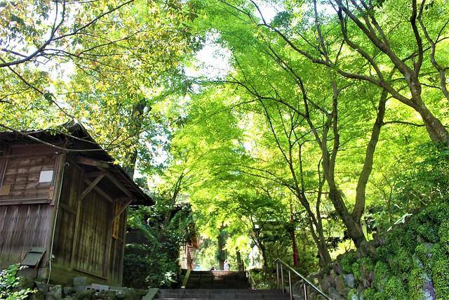 hachimanasami-gosyuin034