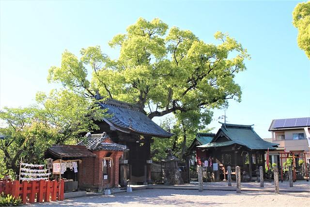 ushijima-gosyuin006