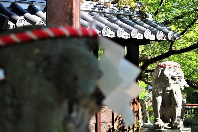 ushijima-gosyuin015