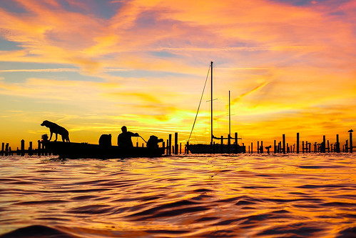 daphne alabama mobilebay beach water shore gulfcoast wharf dock pier sailboat boat skiff colors red yellow orange blue sunset sky clouds piling post dog man waves surf fun pelican bird roost