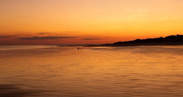 Low tide, low light