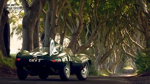 Jaguar D-type '54
